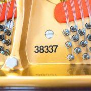PianoCraft-11-16-0088